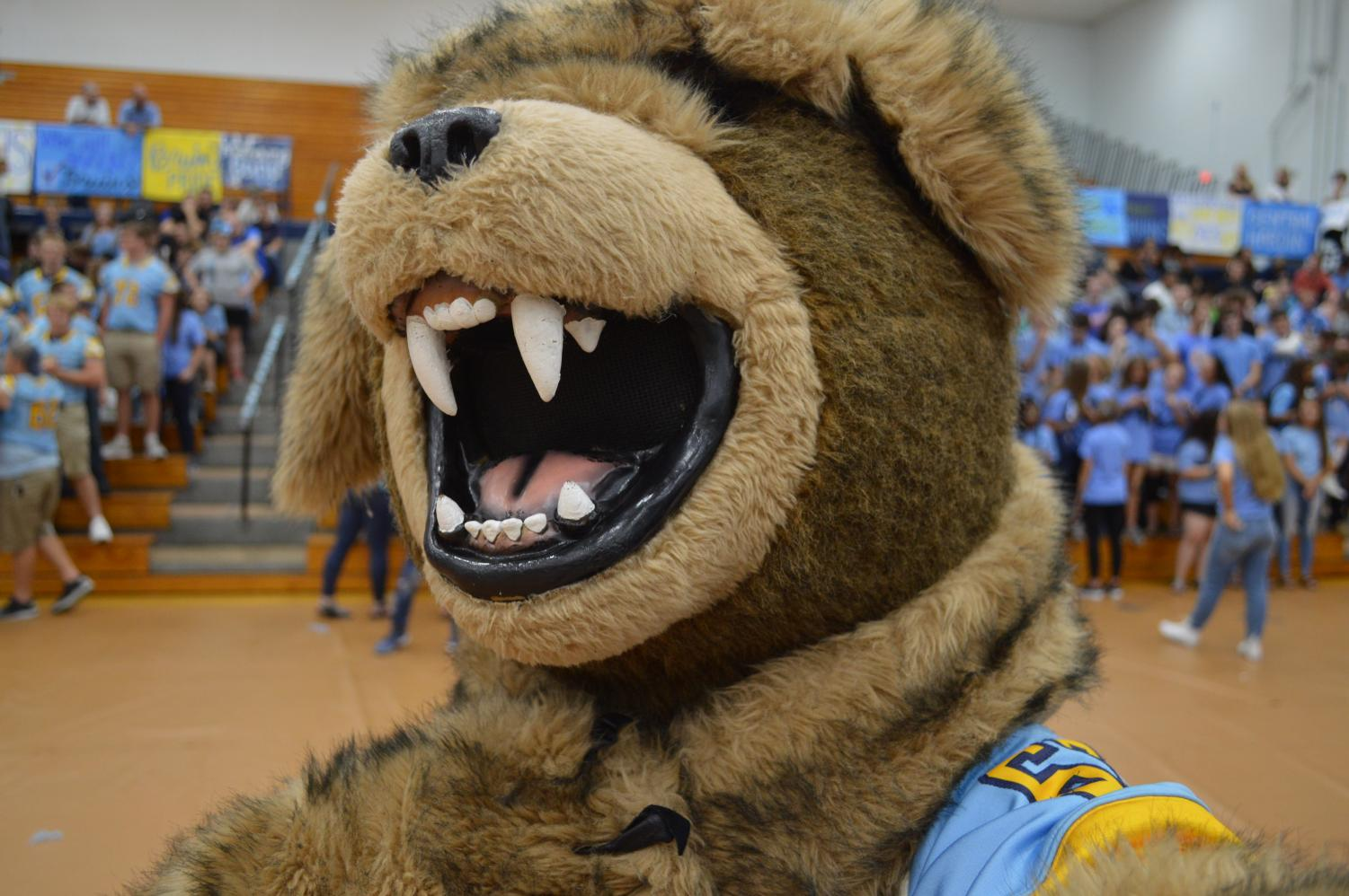 The bruin mascot takes a selfie.